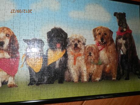 zarámované puzzle - obraz ,