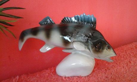 ryba,