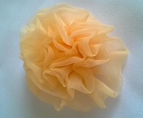 Marhuľové ruže,