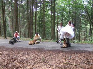 psí úkoly - ženich musel s nevěstou v náručí překročit všechny psy