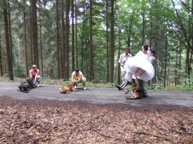 Jani{{_AND_}}Míra - psí úkoly - ženich musel s nevěstou v náručí překročit všechny psy