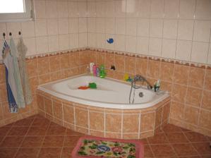 2006 - Koupelna ve spodním patře