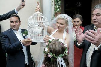 Nasi krasni holubkovia