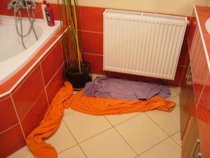 koupelna pod půdou