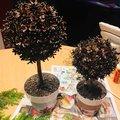 Tak jsem stihla rovnou dva 🤗 jeste jim upravim kvetinace, striknu snehem a bude hotovo