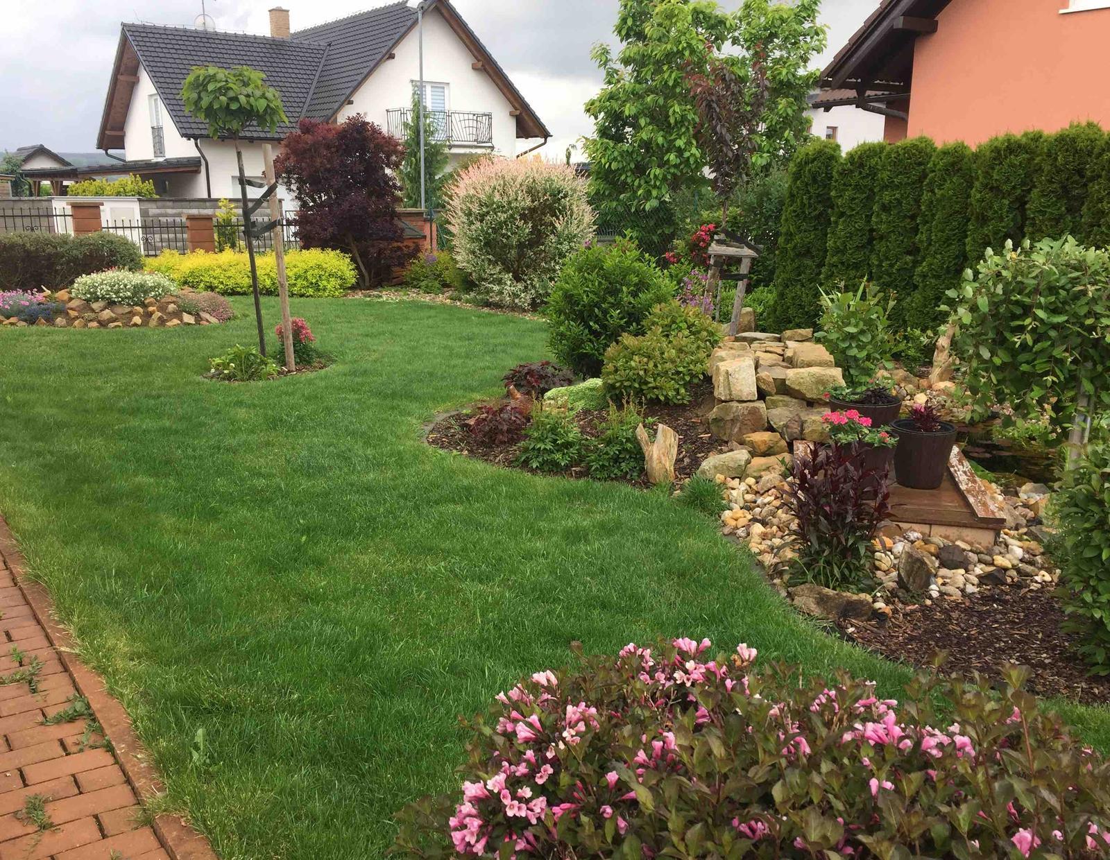 Naše barevná zahrada 🌸 - Zahrada po dešti-tráva roste před očima 🤗