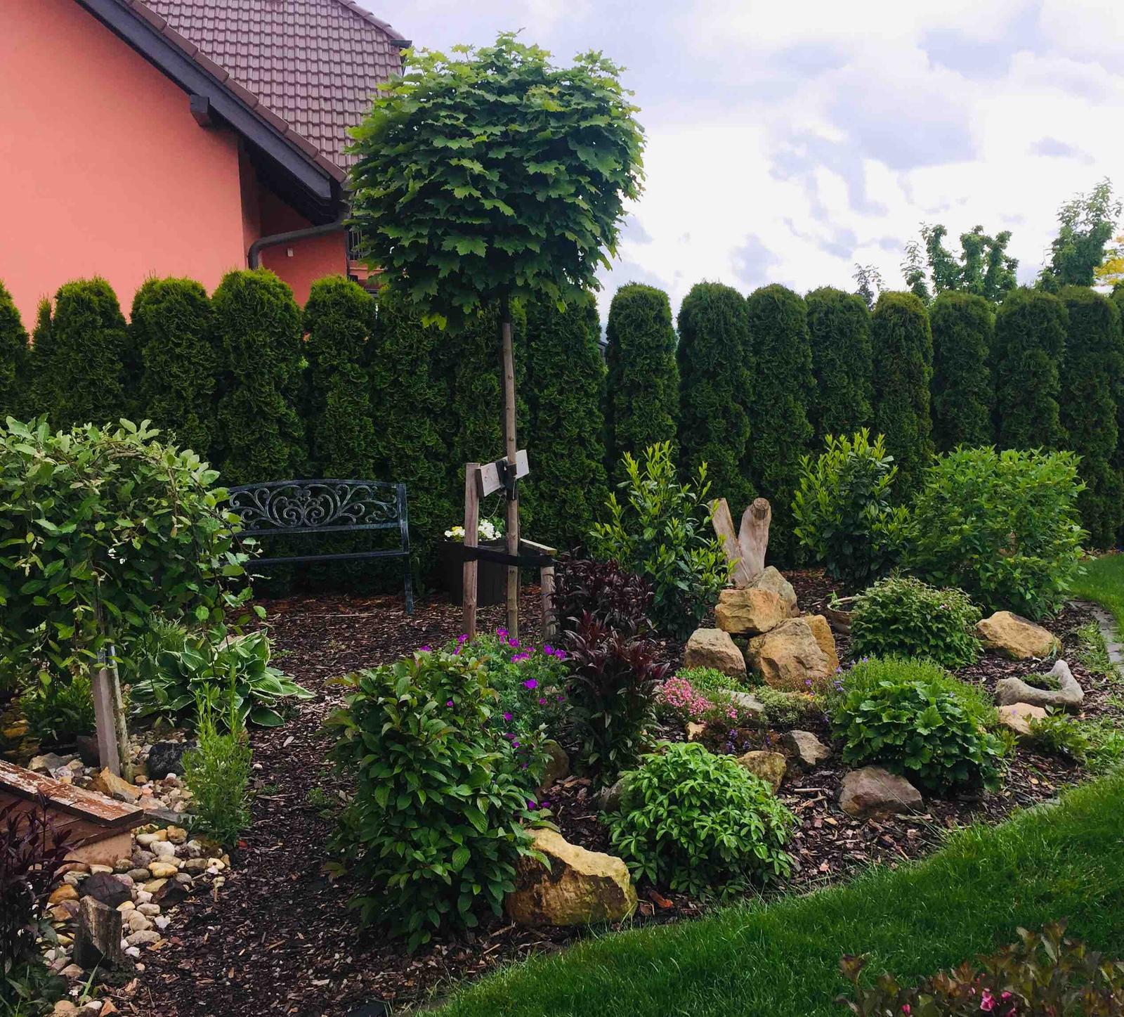 Naše barevná zahrada 🌸 - Už ani nepamatujeme kdy napršelo tolika vody 🤗