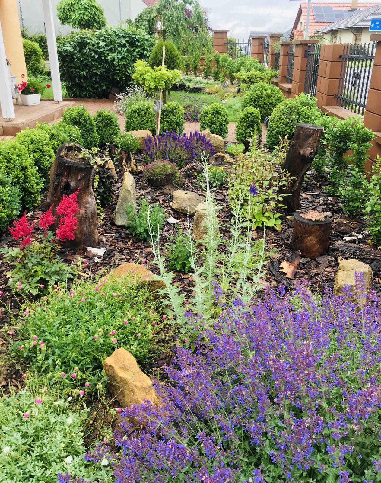 Naše barevná zahrada 🌸 rok 2020 - Záhonek před domem, letos jsem ho hodně doplnila a každou chvilku kvete něco jiného 👌