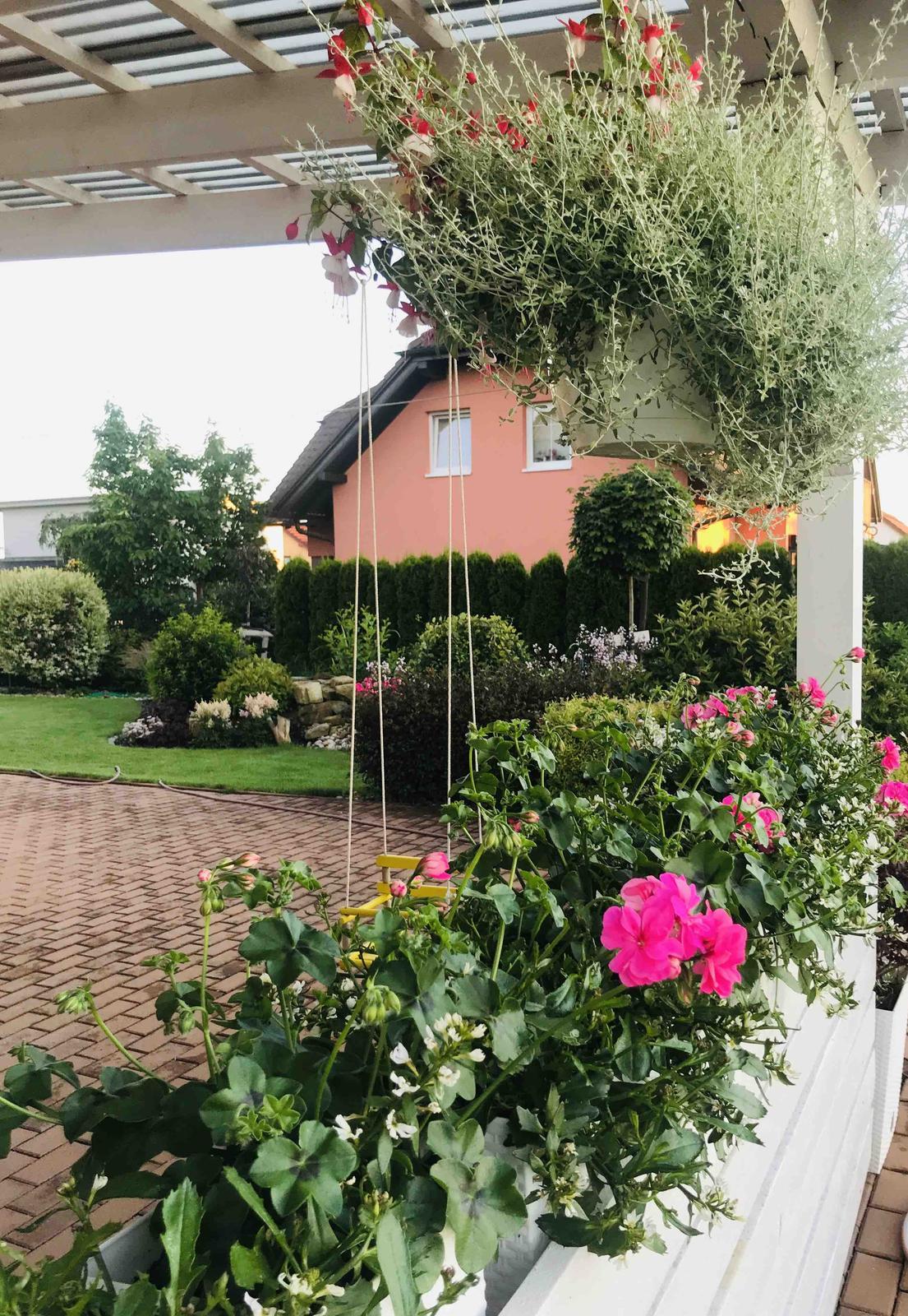 Naše barevná zahrada 🌸 - Z pergoly výhled do zahrady