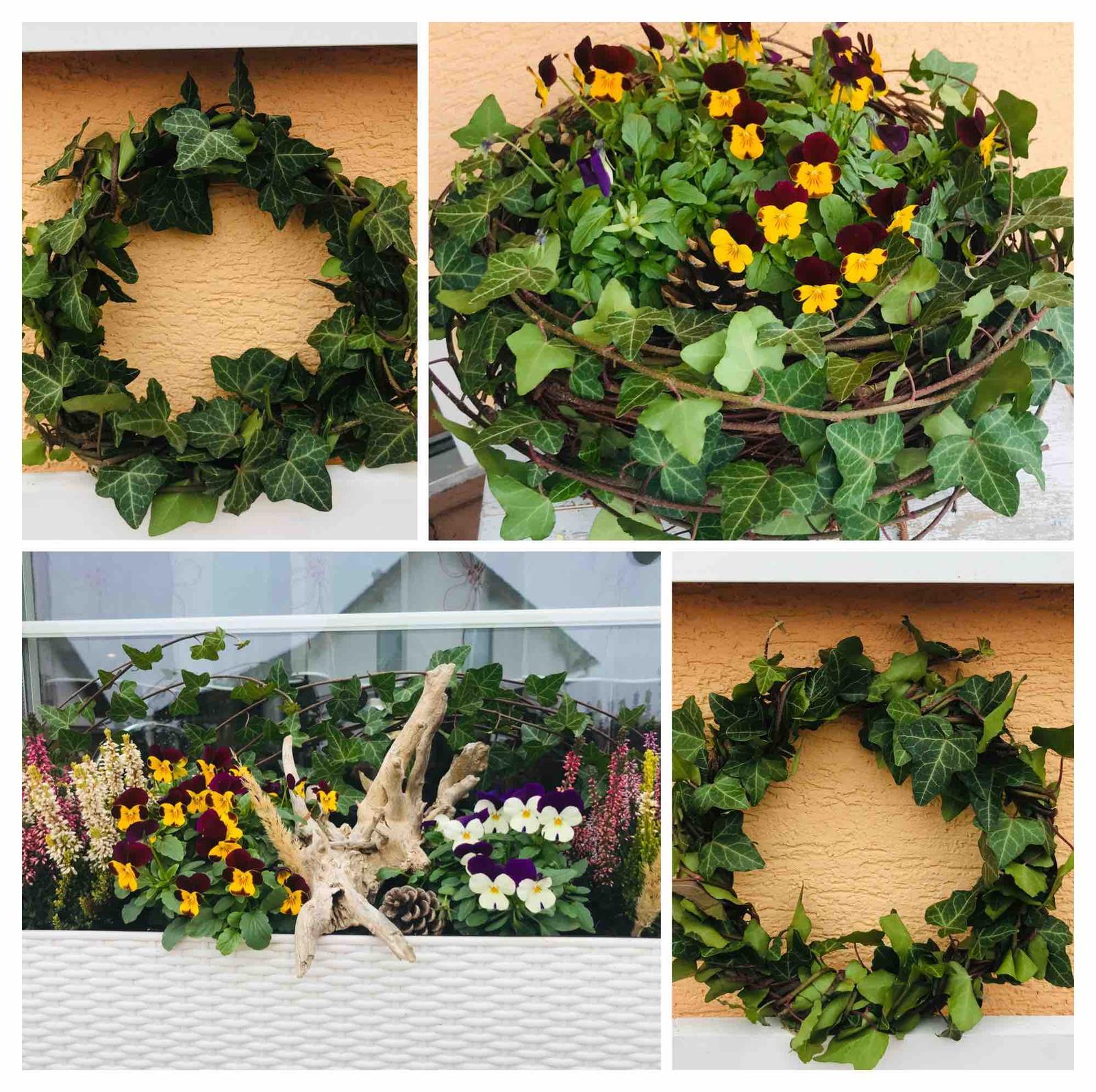 Naše barevná zahrada 🌸 - Pár větviček břečťanu a jakou udělá krásnou přirodní dekoraci 🍁