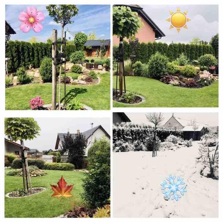 Naše barevná zahrada 🌸 - Roční období na naši zahradě 🌸☀️🍁❄️