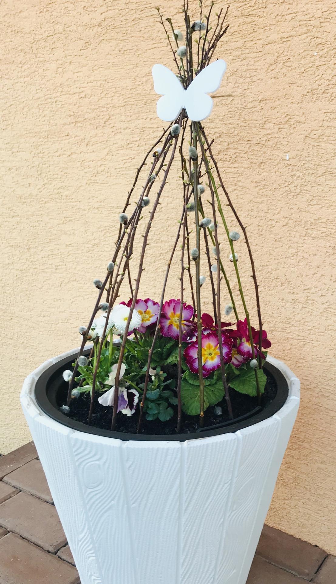 Naše barevná zahrada 🌸 - Obrázek č. 2