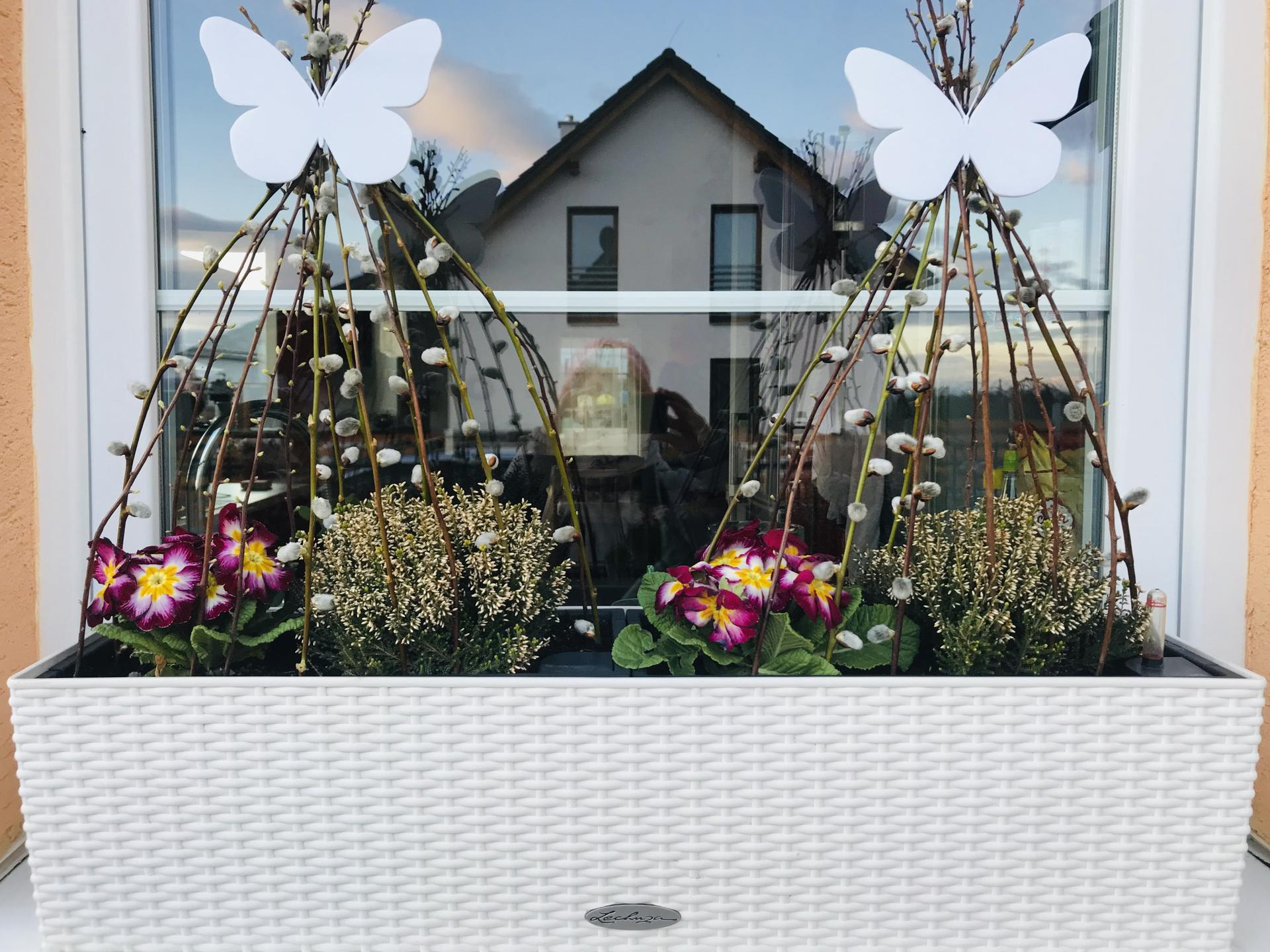 Naše barevná zahrada 🌸 - Počasí ješte všelijaké, ale ať si ty jarní truhlíky stihnu ještě užít, než přijdou letní