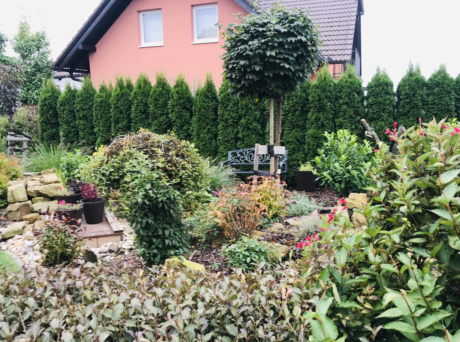 Naše barevná zahrada 🌸 - Kolem jezírka jsou krásné podzimní barvičky