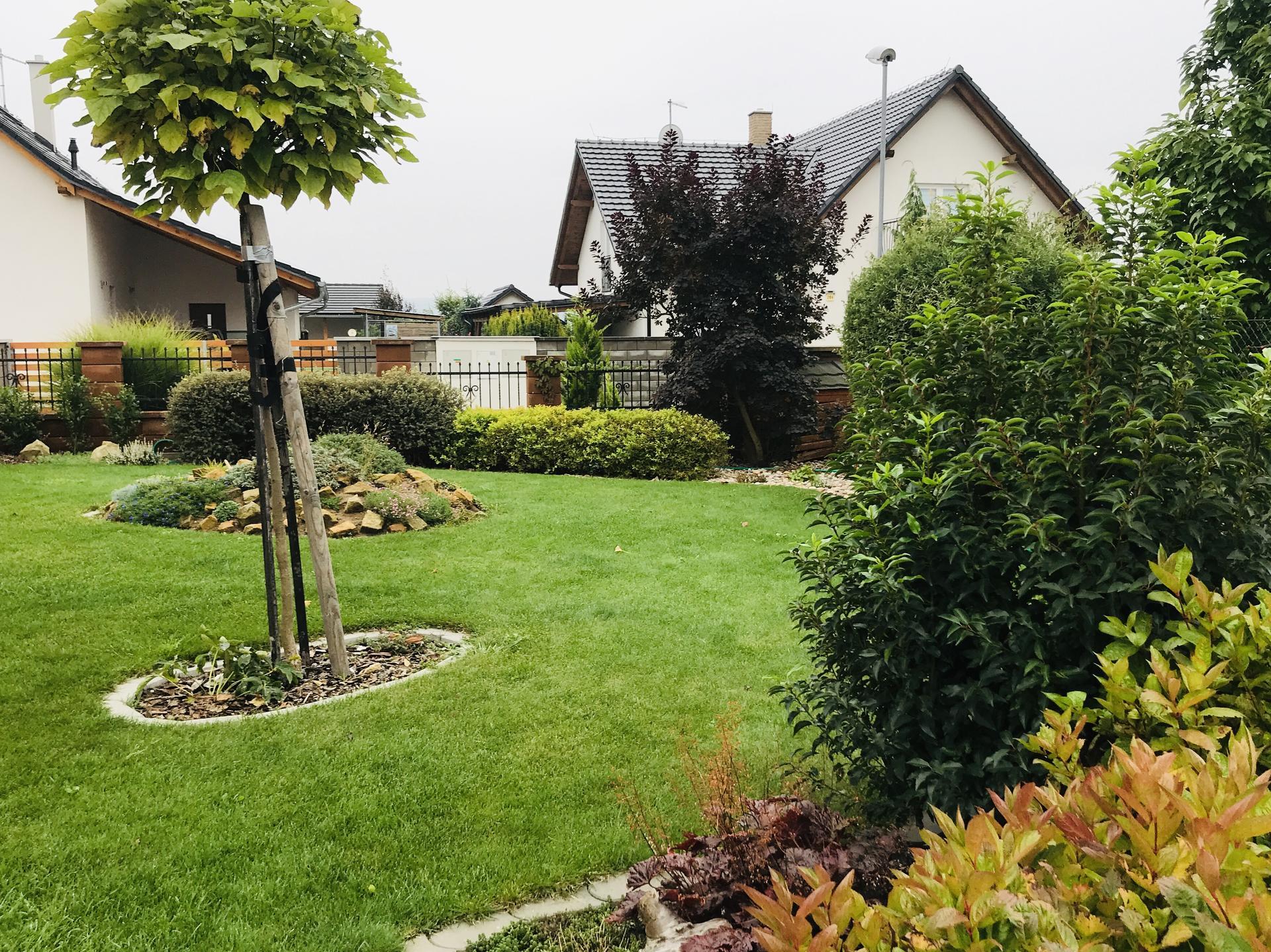 Naše barevná zahrada 🌸 - Letos díky dešťům vše povyskočilo a travička zelená po celé léto