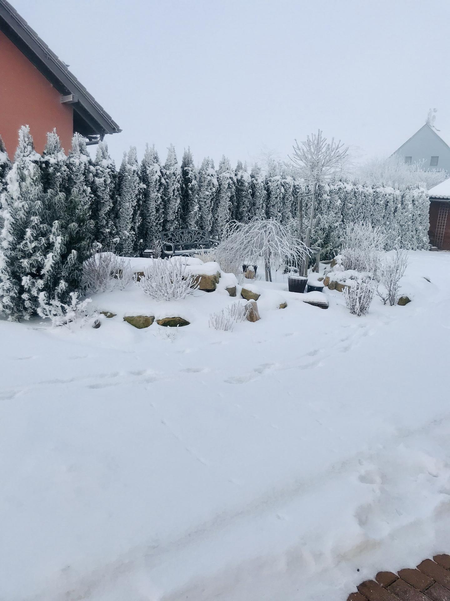 Naše barevná zahrada 🌸 - Taková krásná zima plná sněhu tu dlouho nebyla