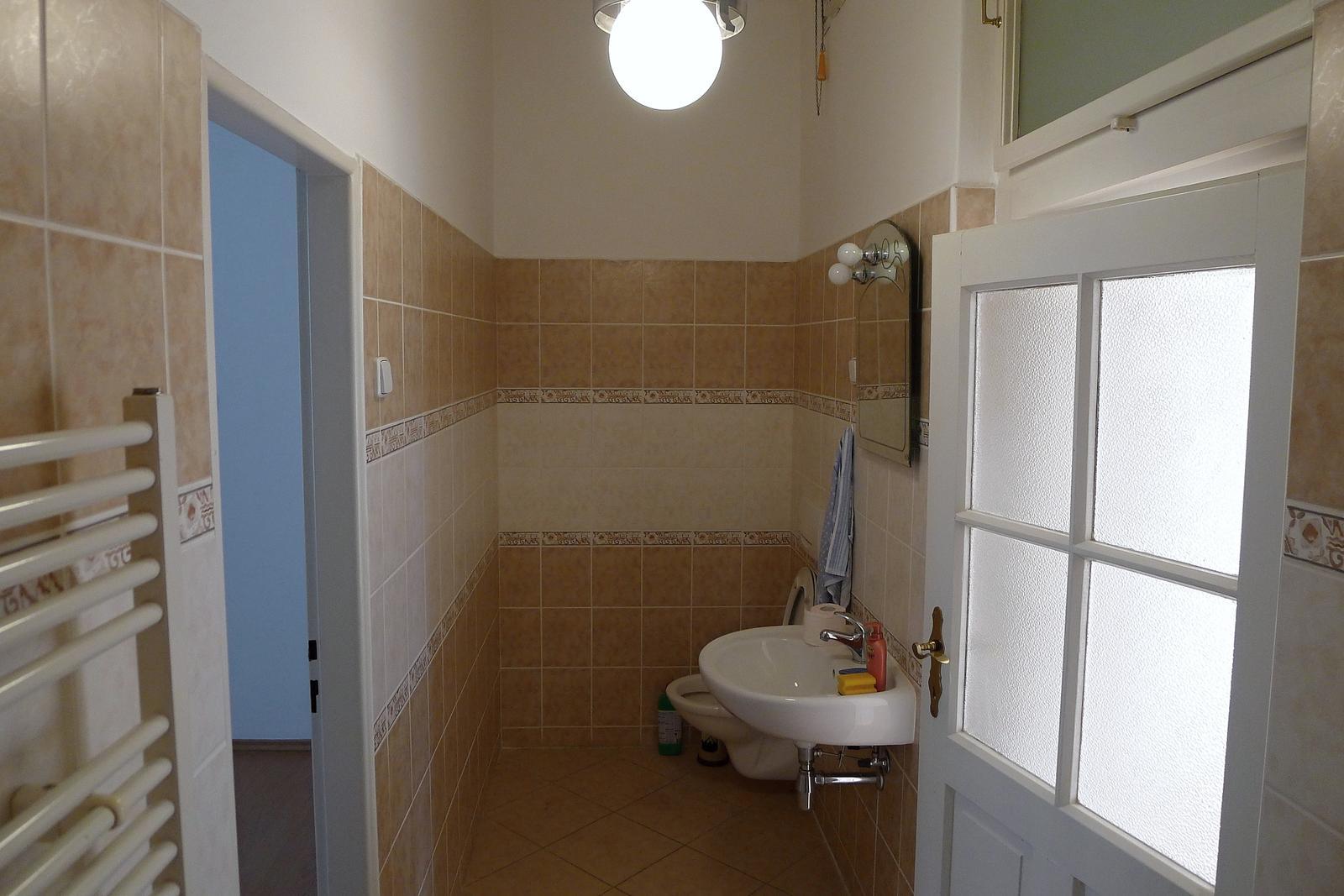 Rekonstrukce našeho domečku - původní koupelna a wc