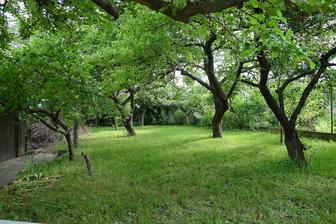pohled do zahrady....budeme ji muset prořezat, aby k nám mohlo sluníčko :o)