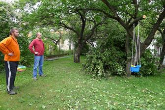 začínáme s prořezem zahrady, stromy byly prorostlé do sebe až hrůza