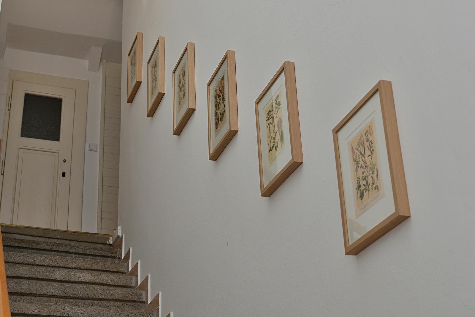 Rekonstrukce našeho domečku - aspoň trošku jsme vylepšili chodbu a schodiště do patra - zatím musí stačit