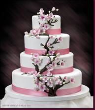 Nádherná torta, zatial vyhrava tato...