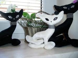 prvé mačičky- lady