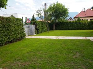 zasiata trávička sa už zelená