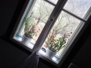 detail oken....kopie původních ...zavírání na obrtlíky