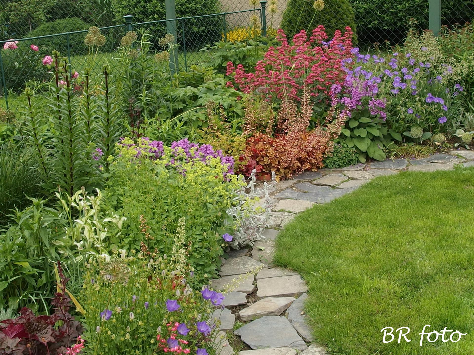 Zahrada v červnu - vše roste a kvete jako o život.... - pravá strana předzahrádky