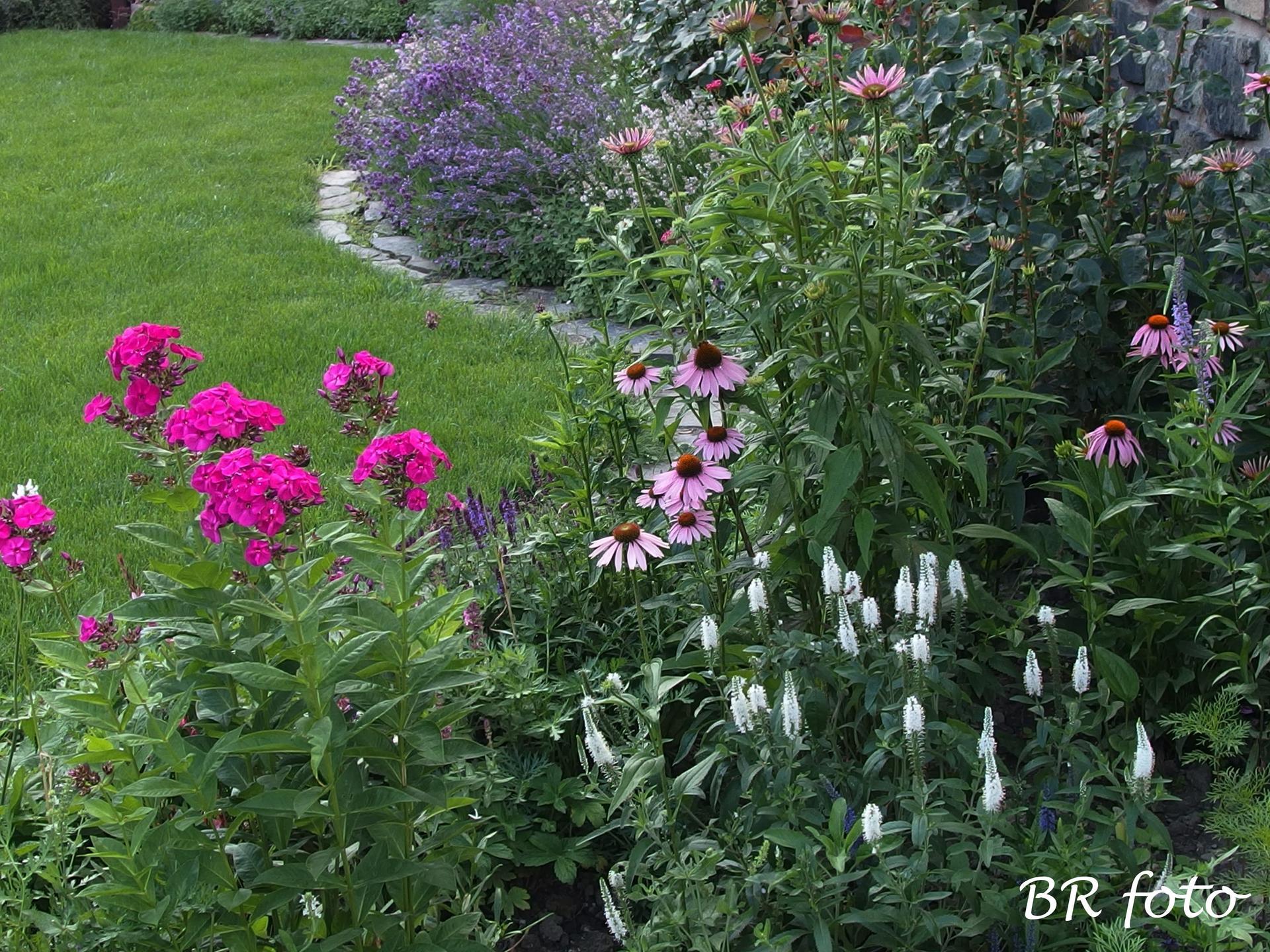 Zahrada v létě - Obrázek č. 12