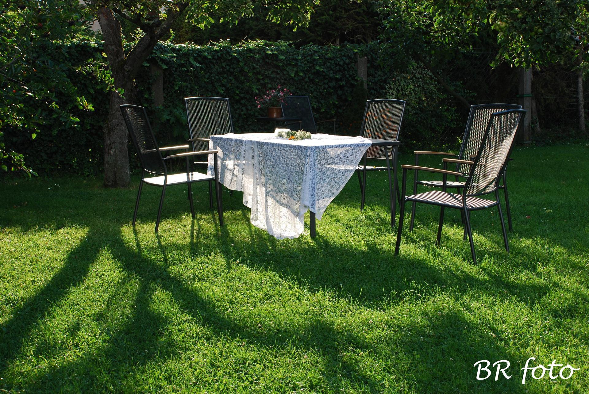 Zahrada v létě - po bouřce...