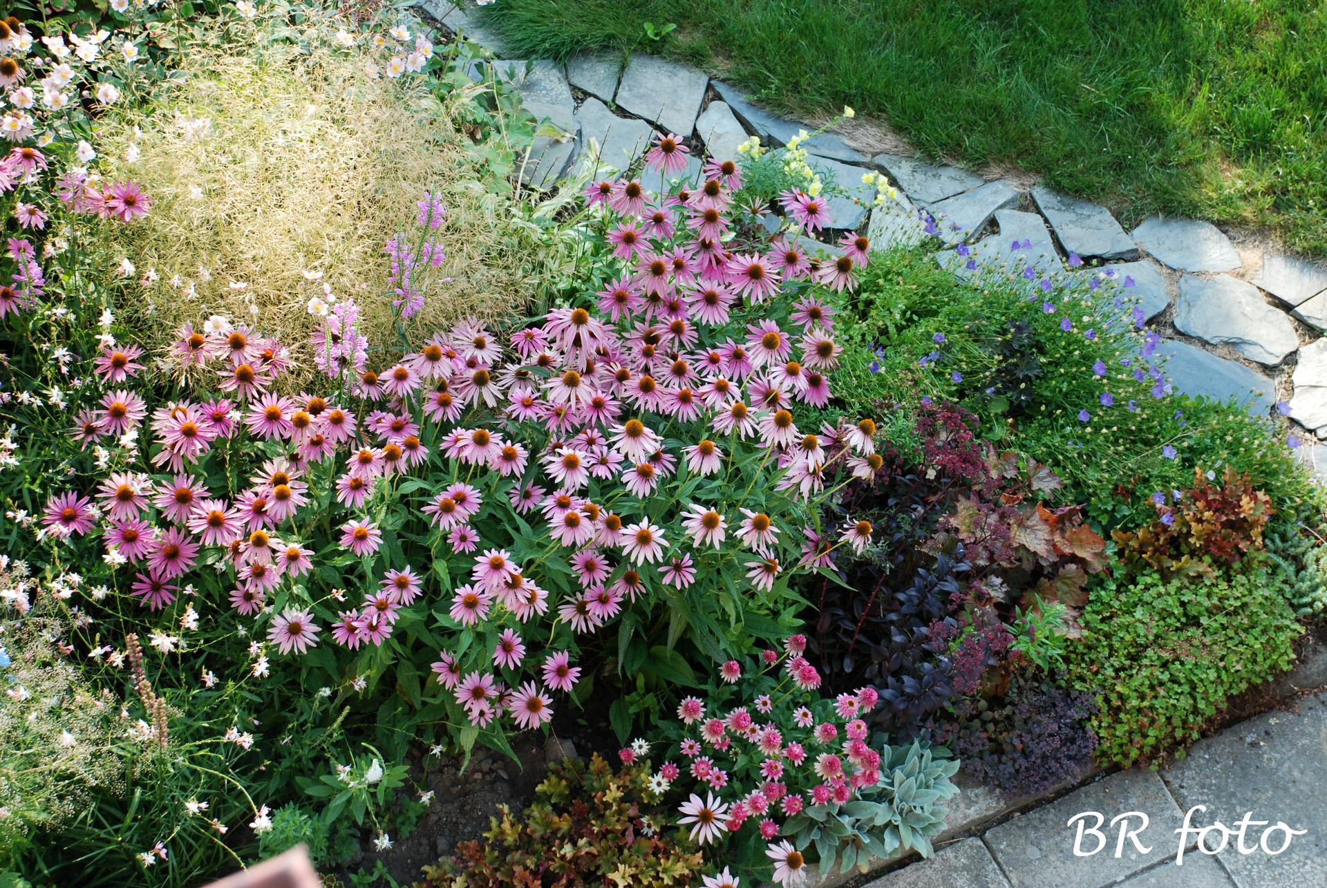 Zahrada v létě - Obrázek č. 103