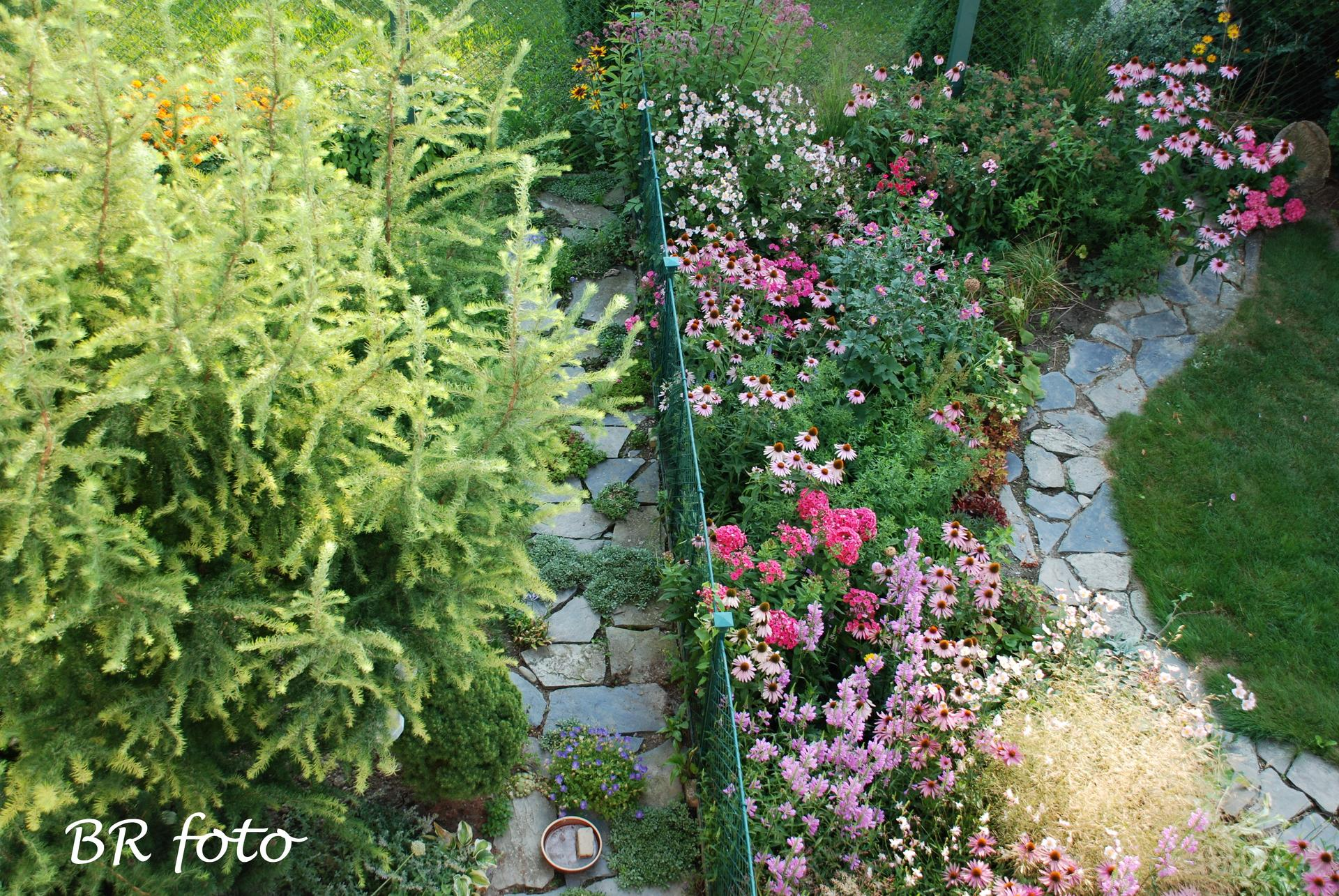 Zahrada v létě - Obrázek č. 102