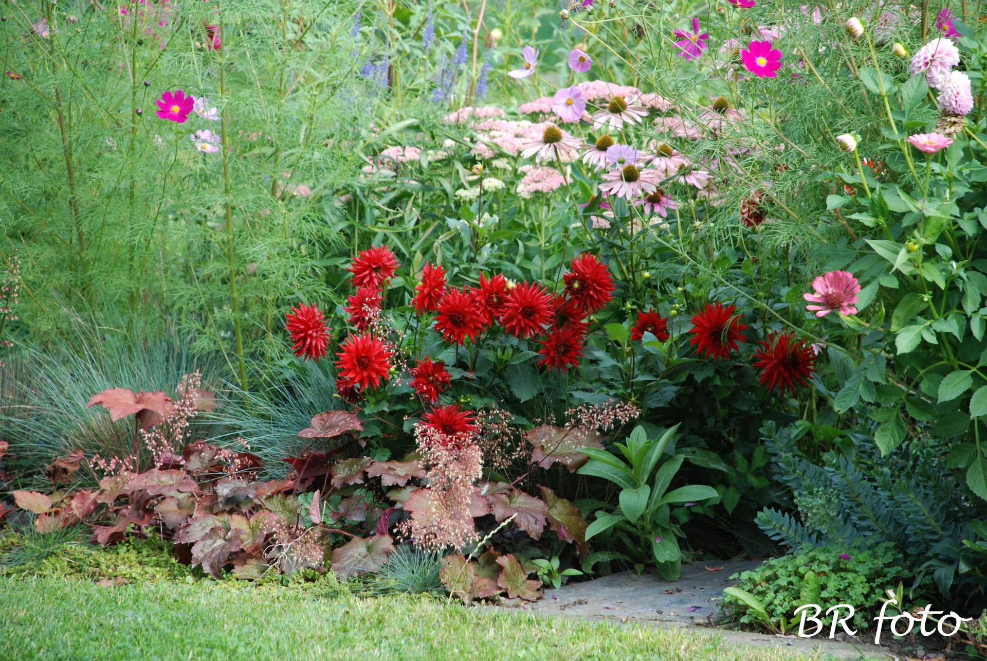 Zahrada v létě - Obrázek č. 139