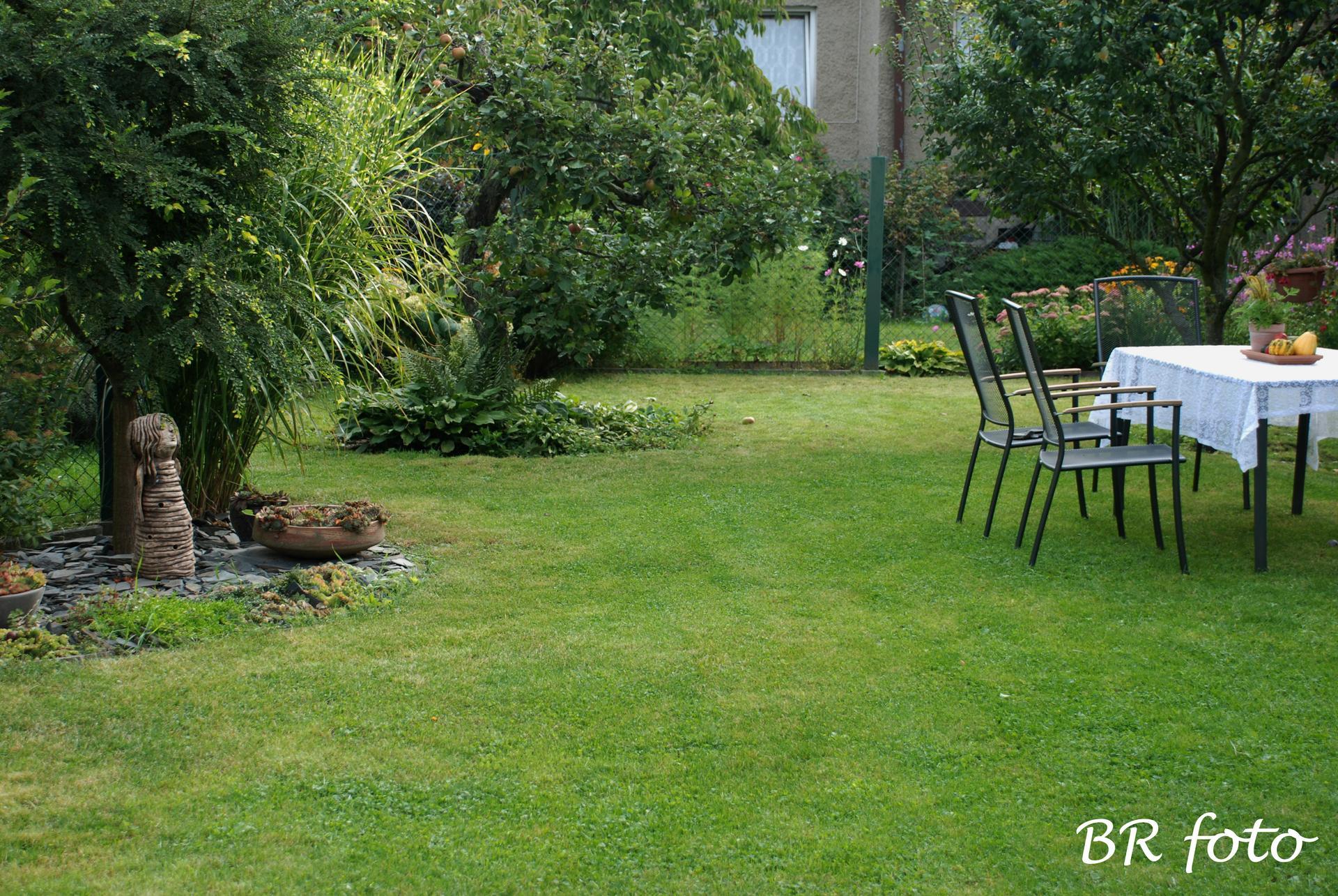 Zahrada v létě - Obrázek č. 132