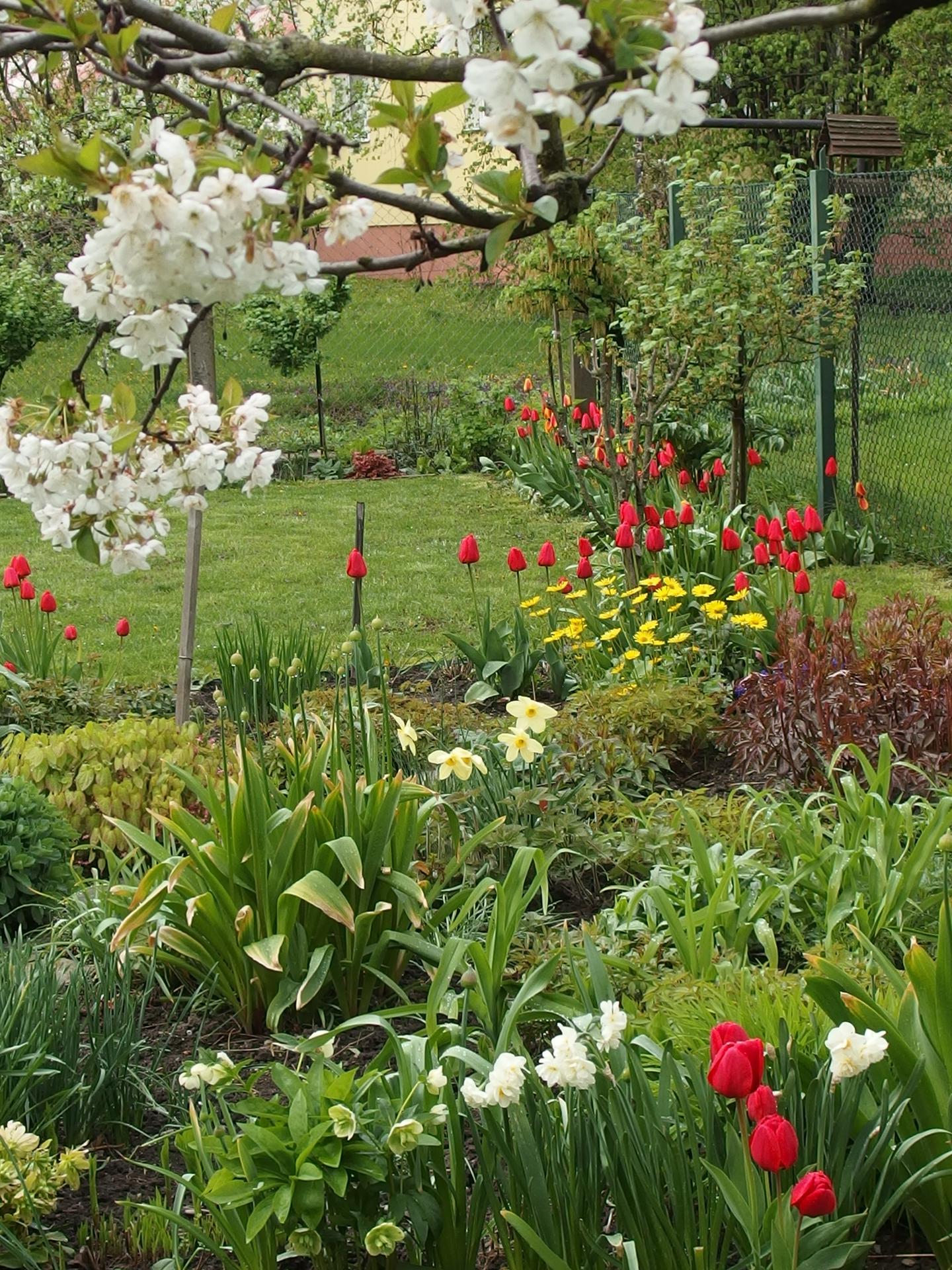 Pozvání do zahrady 2021 - Obrázek č. 39