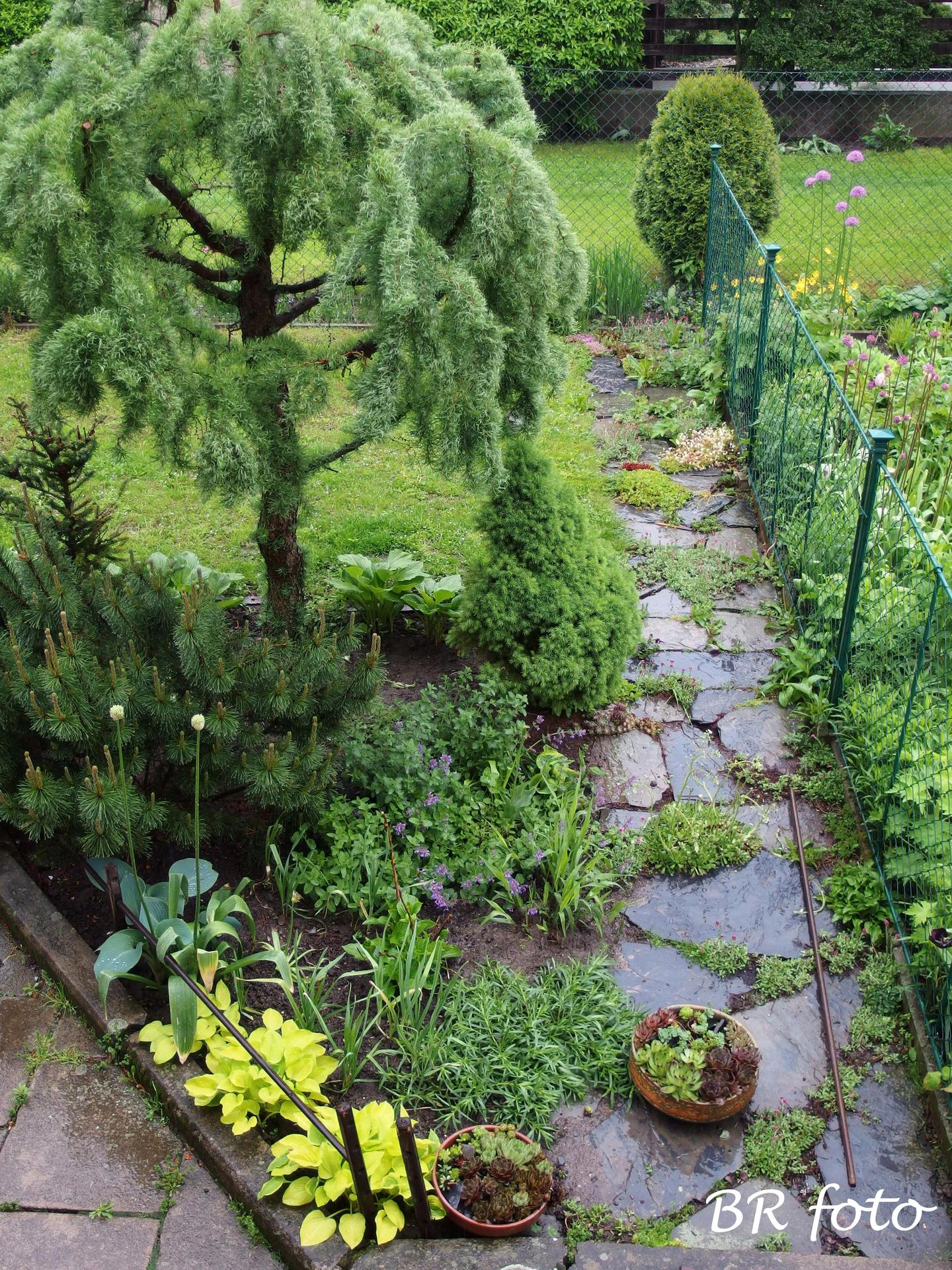 Pozvání do zahrady 2021 - Obrázek č. 98