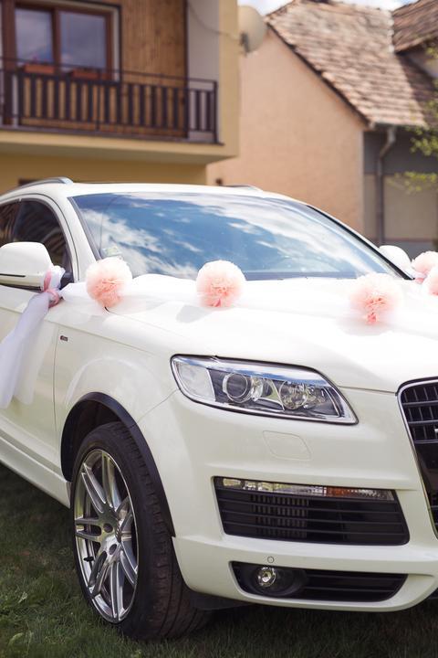 Svadobné autá, ktoré sa objavili na MS - Obrázok č. 12
