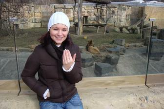 Zoo Praha Trója - žádost o mou ruku...