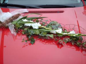 kytička na autě (Evičko díky)