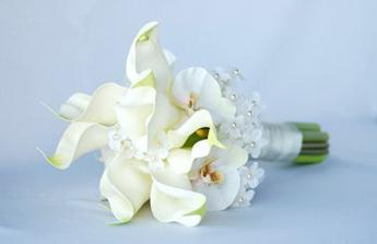 rozhodla jsem se pro kaly a orchidej