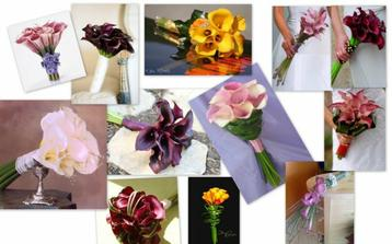 ale aj farebné sú krásne ...  :-)))