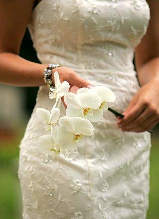 Vysnivana svadba - Obrázok č. 6