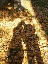 jedna stínová ze Zvíkova :)