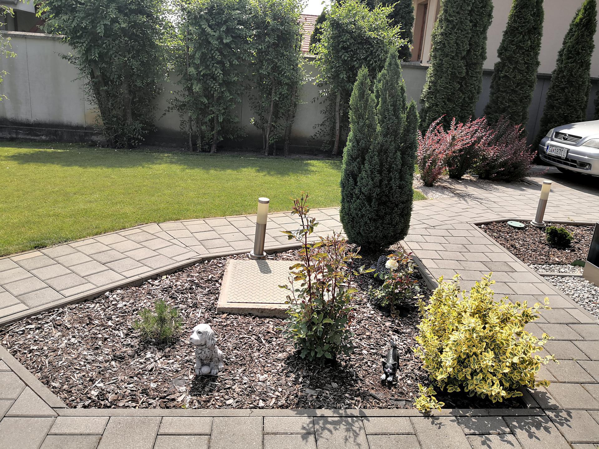 Naša okrasná záhrada už rozrastaná 2020 - Obrázok č. 17