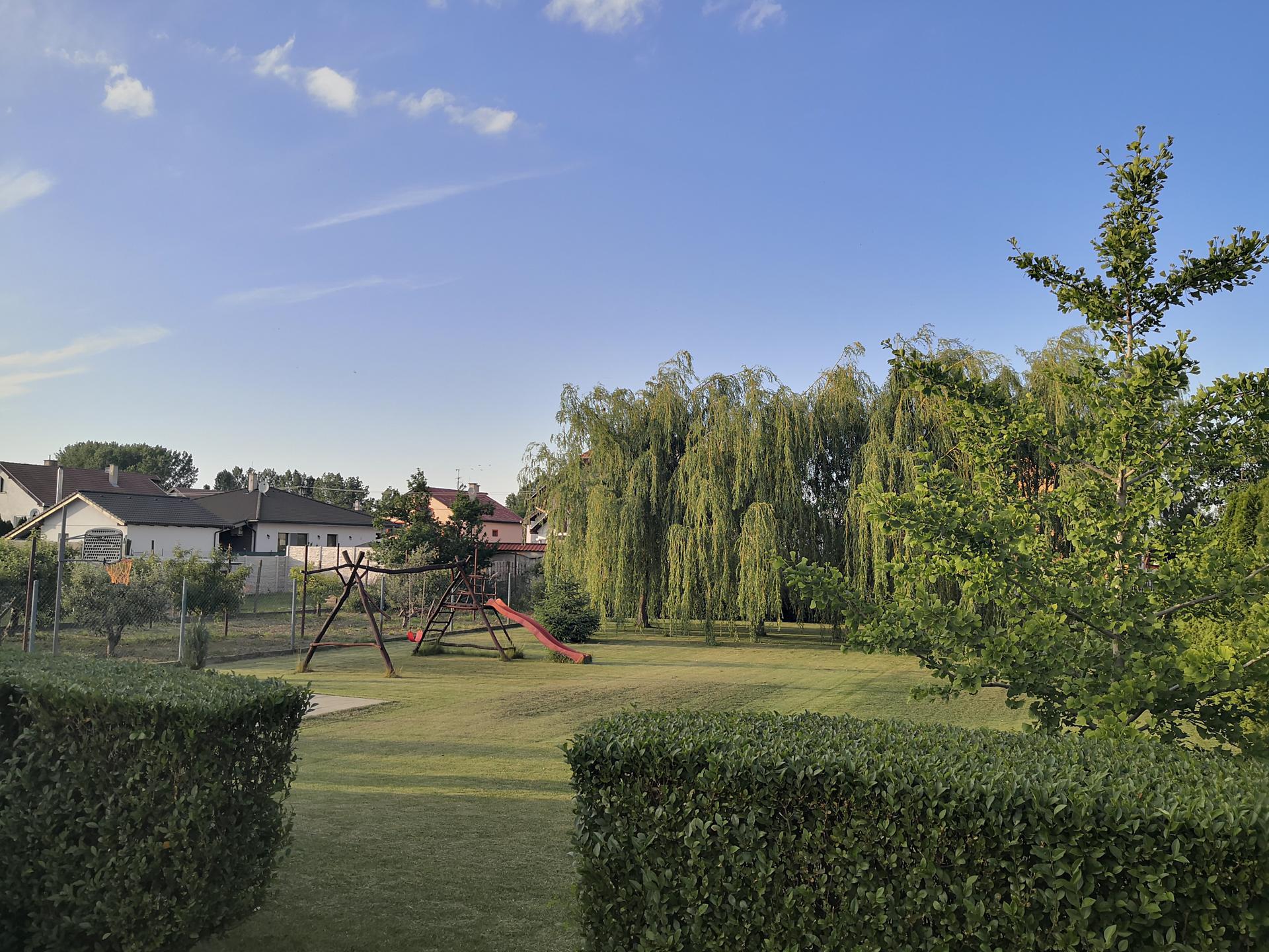 Naša okrasná záhrada už rozrastaná 2020 - Obrázok č. 26