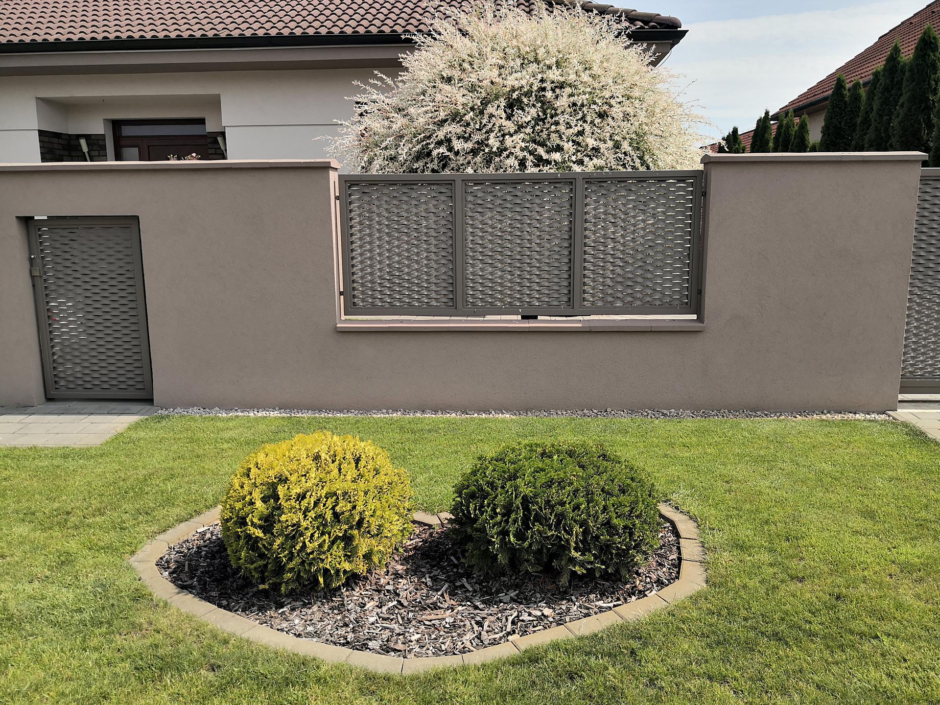 Naša okrasná záhrada už rozrastaná 2020 - Obrázok č. 3