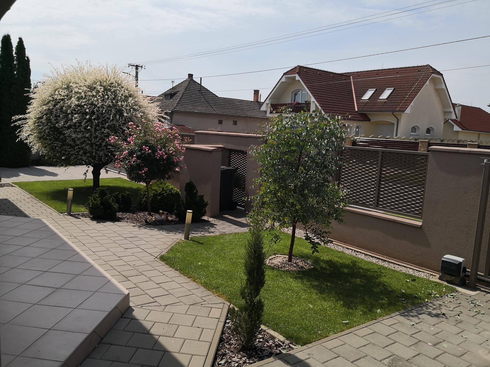 Naša okrasná záhrada už rozrastaná 2020 - Obrázok č. 4