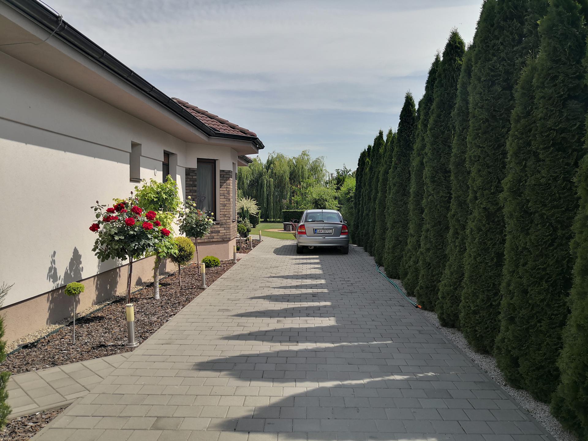 Naša okrasná záhrada už rozrastaná 2020 - Obrázok č. 10