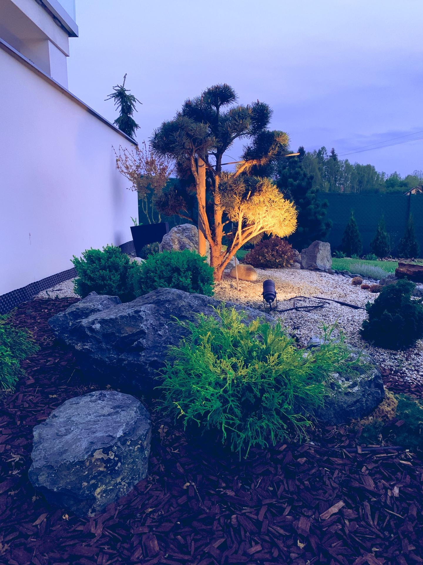 Zahrada 3. rok od výsadby - Obrázek č. 1